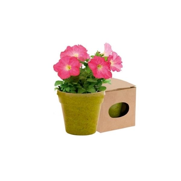 Ekologiczna doniczka do kwiatów